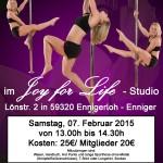Poledance Februar 13h